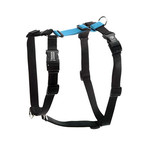 Blue-9 Buckle-Neck Balance Harness, Fully Customizable Fit No-Pull Harness, Ideal for Dog Training and Obedience, Made in The USA, Sky Blue, Medium