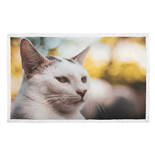 Hengpai Manta para mascotas para gatos y bozal