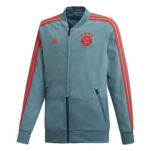 adidas FCB Pre JKT Y Jacke FC Bayern München Kinder L Mehrfarbig (Vernat / Rot)