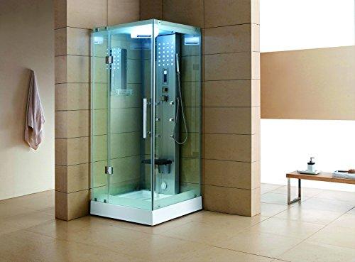WS-303 Corner Steam Shower