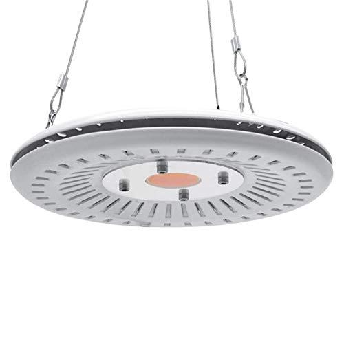 COB LED Grow Light Vollspektrum 100W UFO Led Grow Light Lampe Wasserdicht IP67 für Gemüseblumen Indoor Hydroponic Gewächshaus