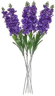 snapdragon flower purple