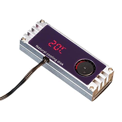 Gazaar Disipadores de calor Ventilador de refrigeración para unidad de estado sólido 2280 22110 NVMe M2, M2 SSD Enfriador Temperatura OLED Pantalla Digital M.2 2280 NVME SSD disco duro