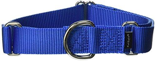 PetSafe Martingale Collar, 1
