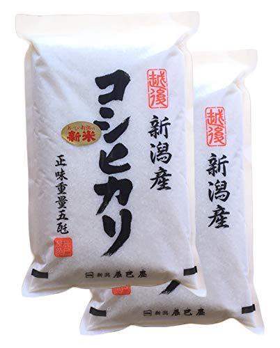 【精米】新米 令和2年 新潟県産 白米 コシヒカリ 10kg(5kg×2袋)新潟辰巳屋 (産地直送米)
