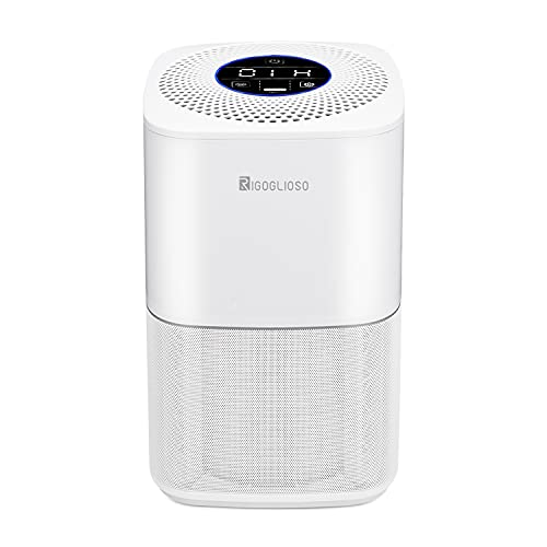 RIGOGLIOSO SY-910 True HEPA Air Purifier for Home Bedroom,