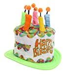 Multi Color Birthday Party Cake Plush Hat for Teens and Adults