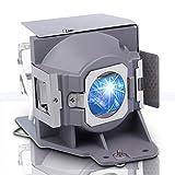 Lanwande MC.JFZ11.001 RLC-079 5J.JCA05.001 Lampe de Rechange de qualité supérieure avec boîtier pour Acer H6510BD P1500 et pour VIEWSONIC PJD7820HD PJD7822HDL et pour BENQ DW843UST DX842UST MW831UST
