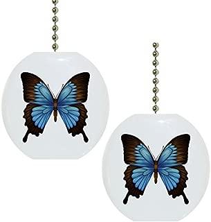 Best blue mountain swallowtail butterfly Reviews