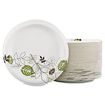 Best dixie plates 10 inch Reviews