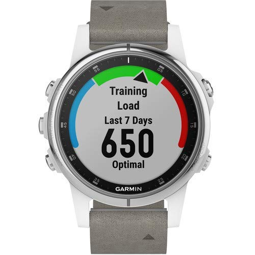 Garmin Fenix 5S Plus Training GPS (42mm) (White with Suede Band) Running Watch Bundle with Charger + Screen Protectors + More 4