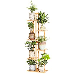 Image of Bamboo 6 Tier 7 Potted...: Bestviewsreviews