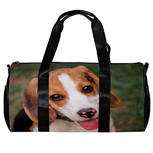 Bolsa de deporte redonda con correa de hombro desmontable para perros jóvenes Beagle jugando jardín marrón bolsa de entrenamiento para mujeres y hombres