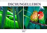 Dschungelleben - Tierportraits (Wandkalender 2022 DIN A4 quer)