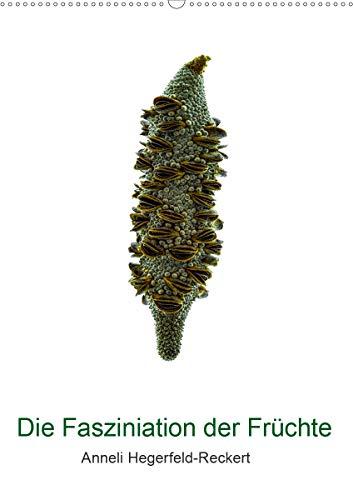 Die Faszination der Früchte (Wandkalender 2021 DIN A2 hoch)