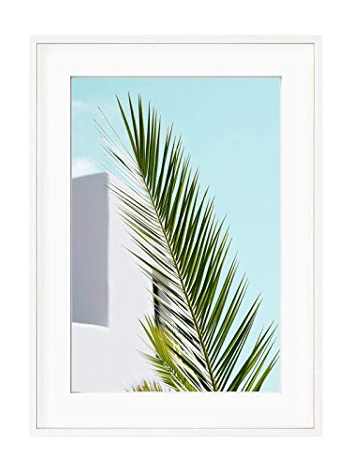 Palm Leaf and Blue Sky, White Lacquered Wood Frame, with Mount, Multicolored, 50x70