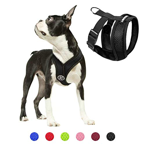 Gooby Comfort X Head In Harness - Black, Small - No Pull Small Dog Harness, Patented Choke-Free X Frame - Perfect on the Go Dog Harness for Medium Dogs No Pull or Small Dogs for Indoor and Outdoor Use