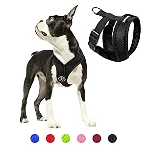Gooby Dog Harness – Comfort X Head-in Small Dog Harness with Patented Choke-Free X Frame – Perfect on The Go No Pull Harness for Small Dogs or Cat Harness