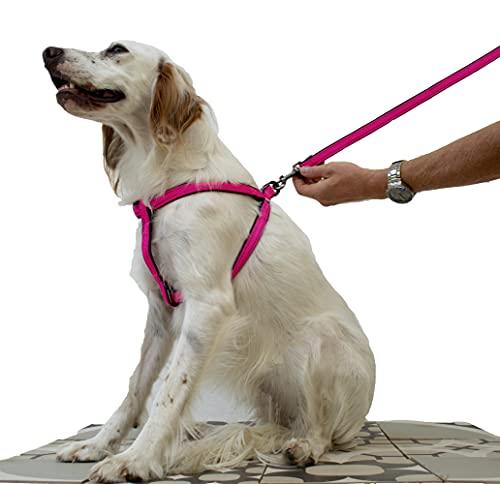 Pettorina Cane Step-In Nylon, Riflettente, Regolabile Per Cani Piccoli Medi e Grandi   Imbracatura Cani, Gatti, Cuccioli, Gatto Taglia Piccola Media Grandi Regolabile (Fuxia)