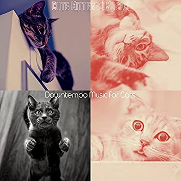 Cute Kittens (Music)