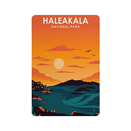 Haleakala National Park Retro Iron Painting Personalizzato Illustrazione Arte Segnale Di Avvertimento Stoccaggio Bar Decorazione Della Parete