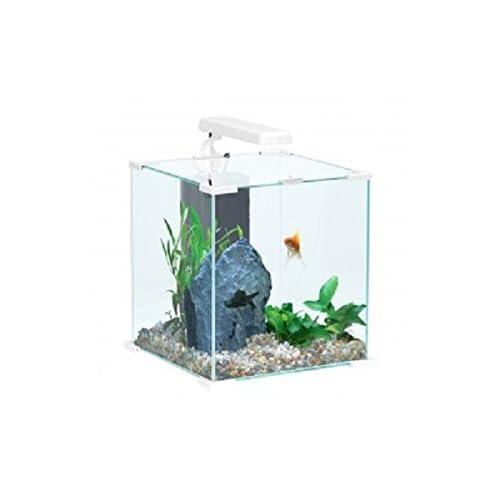 Aquarium complet NanoLife Cube Blanc Zolux 30 litres