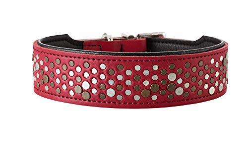 HUNTER BASIC RIVELLINO Hundehalsband, beschichtetes Spaltleder, Kunstleder, individueller Nietenbesatz, 55 (M), rot