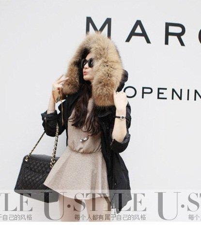 『ファッションコート 大きいアライグマの毛皮の襟』の1枚目の画像
