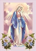 16x20 Inch Rhinestone Cross-stitch Holy Virgin Mary DIY Diamond Painting Kits Arts, Crafts & Sewing 5D Diamond Painting