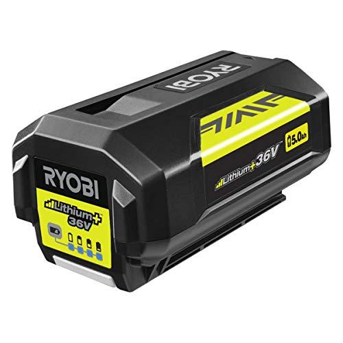 Ryobi Akku MaxPower BPL3650D2 (5,0 Ah, Spannung 36 V, Überladungsschutz, Ladestandsanzeige, Gummi-Anstoßschutz) 5133004387