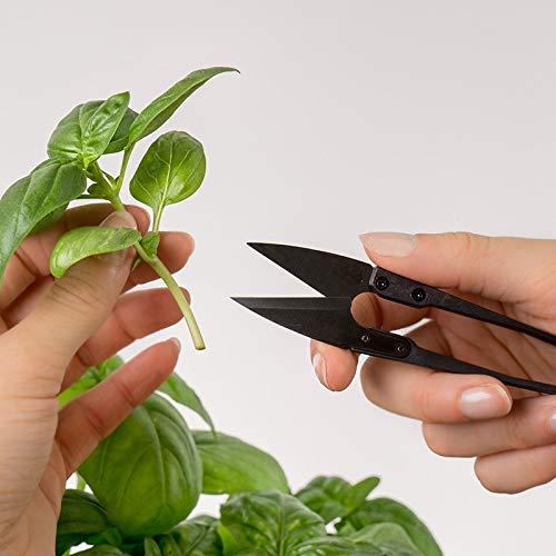 Véritable® Accessoire pour Potager d'Intérieur - Ciseaux (Mini-Ciseaux à Herbes)