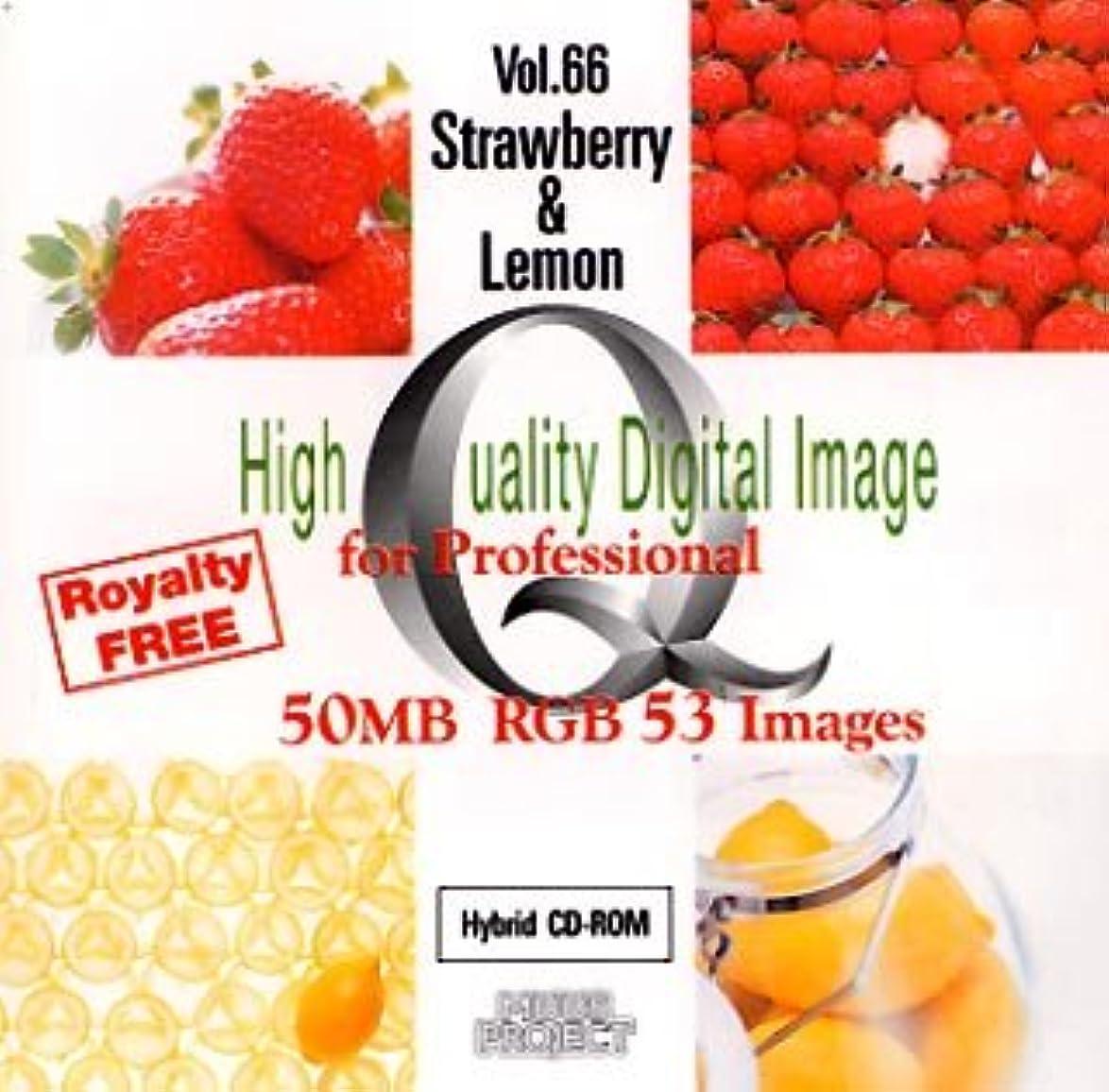 自動的に夜明けにパントリーHigh Quality Digital Image for Professional Vol.66 Strawberry & Lemon