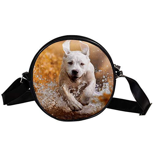Runde Crossbody Tasche Kleine Handtasche Damen Mode Schultertaschen Messenger Bag Canvas Tasche Hüfttasche Zubehör für Frauen - Hund Laufen auf dem Wasser