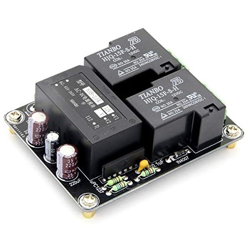 スプーン見かけ上ジュラシックパークハイパワーアンプスピーカー保護基板、ダイレクトAC 110-220V電源