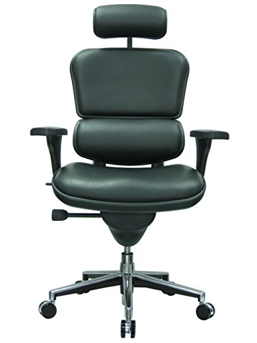 Ergohuman Ergonomic Executive Leather Chair