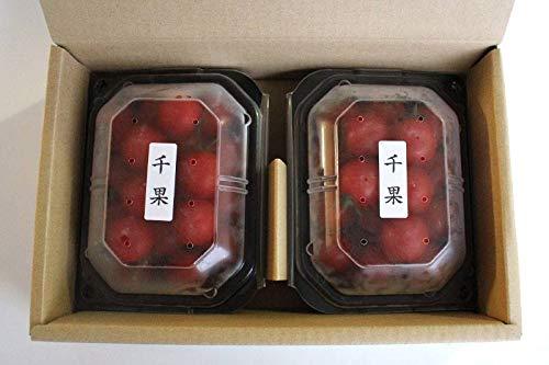 静岡県産 濃縮ミニトマト 千果 ちか 200g×2P××5箱 千果 農家さんから産地直送でお届け お取り寄せトマトギフト
