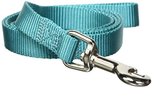 Zack & Zoey Basic Nylon Dog Leash, 4-Feet x 5/8-Inch Lead, Bluebird