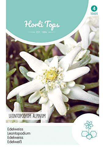 Hortitops 15405 Edelweiß (Blumensamen)