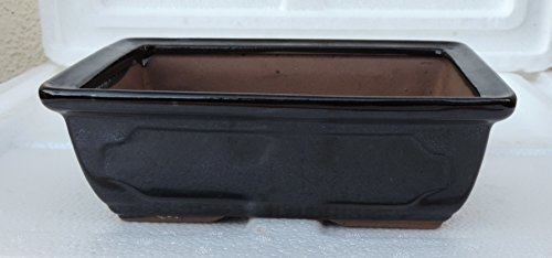Ceramic Bonsai Pots - Japanese Jmbamboo Brand - Black Ceramic Pot Is 8x6 x3''
