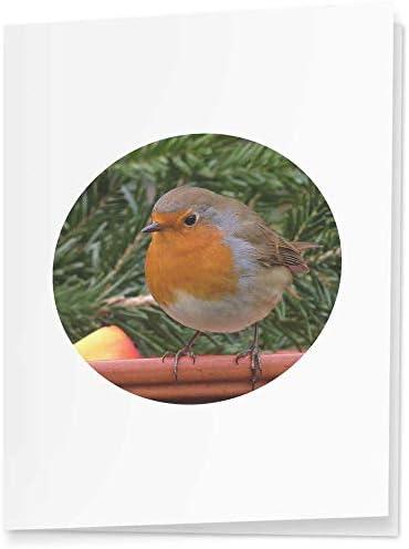 4 x Zittende Robin Cadeaulabelslabels GI00005061