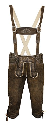 MOSER Trachten Lederhose kniebund mit H-Träger antik-nuss gespeckt Rotwand 110719 von Maddox, Material Leder, Größe 52