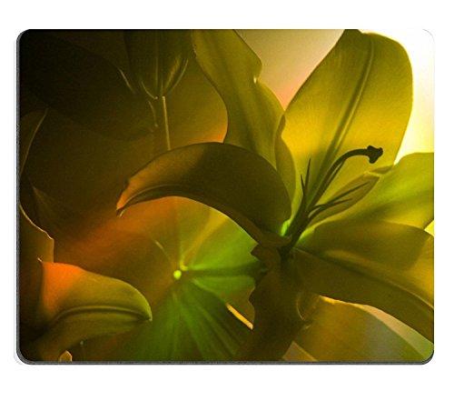 luxlady Gaming Mousepad Lilium Lilium Gattung in der Familie Liliengewächse um etwas, wie 75Arten Native, die gemäßigtes euroasia oft Pflanzen, die von G