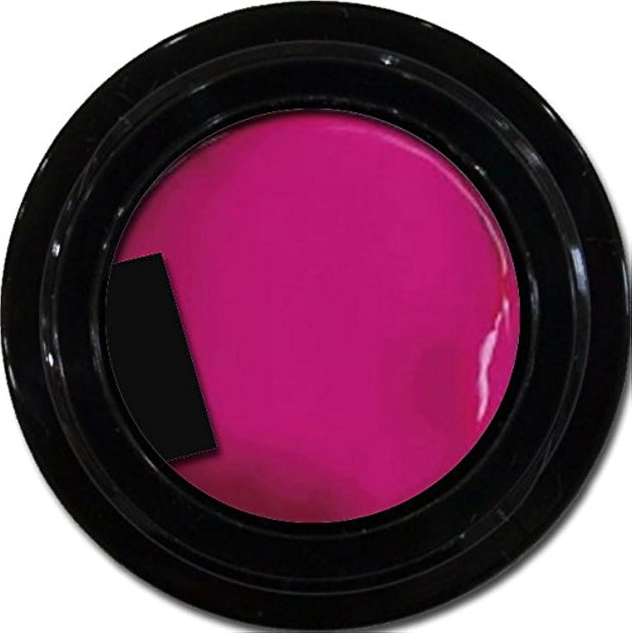 驚き不平を言う導体カラージェル enchant color gel M214 NeoPink 3g/ マットカラージェル M214 ネオピンク 3グラム