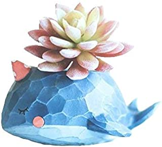 Wish you have a nice day Blue Whale Resin Succulent Planter Pots for Office House Balcony Landscape Creative Decorative Flower Pots (Whale)