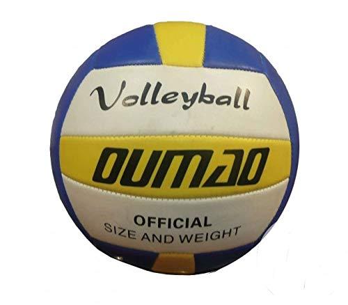 Loisirs Distribution - Ballon Volley À Tranches Taille 5 (Livré À Plat)
