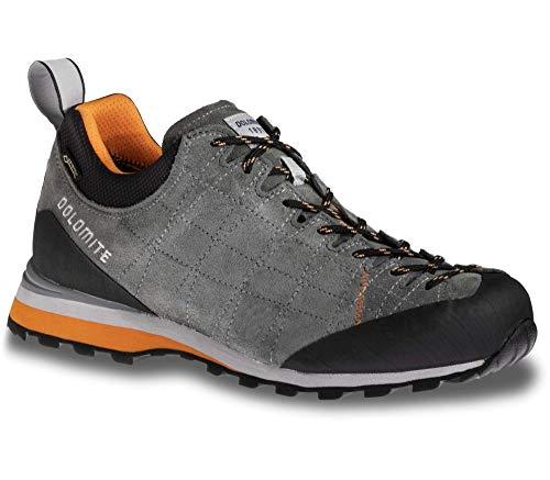 Dolomite Unisex-Erwachsene Zapatilla GTX DIAGONAL Shoe, Silbergrün/Sonnenorange
