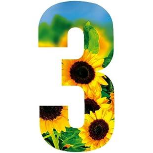 Customer reviews Wheelie Bin Number Sunflower 3