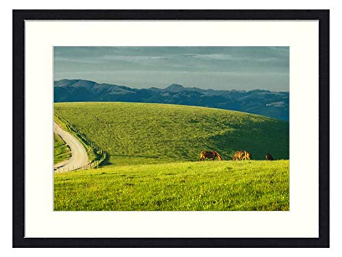 OiArt Wall Art Print Wood Framed Home Decor Picture Artwork(24x16 inch) - Umbria Italy Monte Subasio Horses Pastures