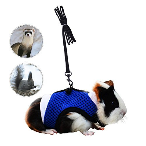 Soft Mesh Small Pet Harness with Safe Bell, No Pull Comfort Padded Vest Durable Nylon Guinea Pig Harness and Leash Set Adjustable All Season for Rats, Iguana, Hamster, Bearded Dragon