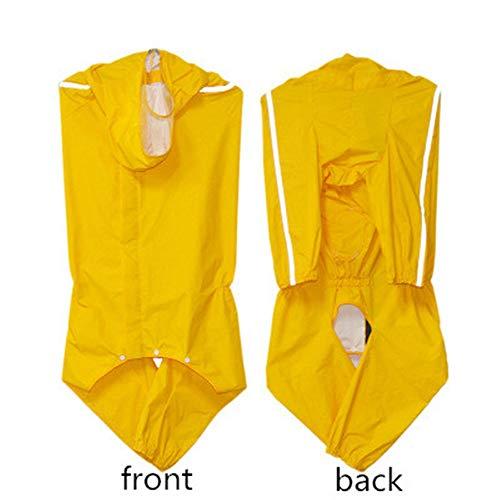 Hey Shop schnell trocknender neuer Haustier Regenmantel Beschlagen nicht Corgi Teddy Hund wasserdichte Kleidung All-inclusive Transparent Krempe 9.99